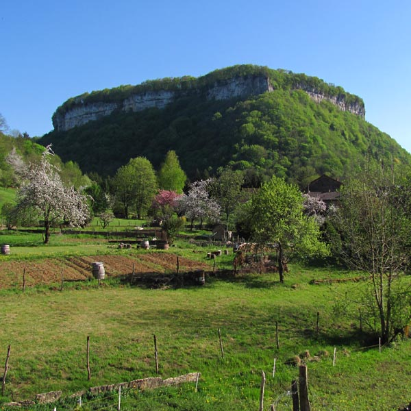 Vue du Jardin et la vallée de Saint Denis
